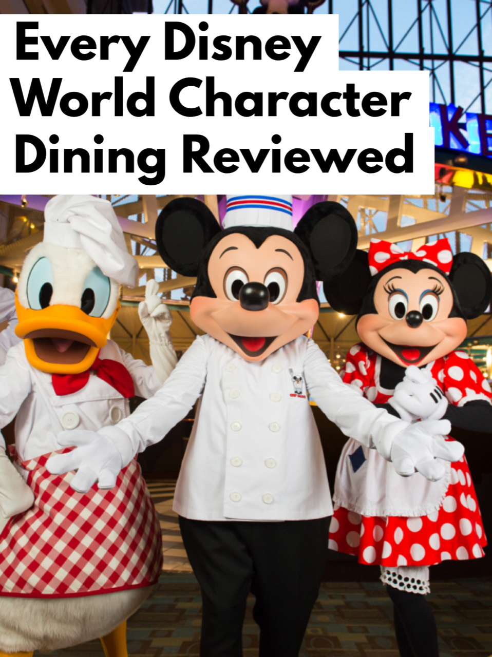 Every Character Dining Disney World 2018 Experience Reviewed