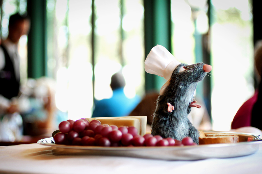 Rat-epcot food and wine festival