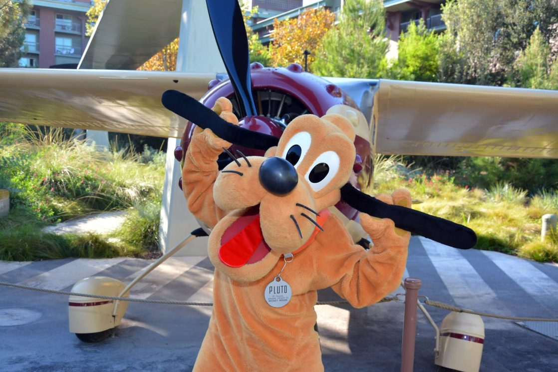 Pluto holds his ears out in a silly pose in front of the Grizzly plane
