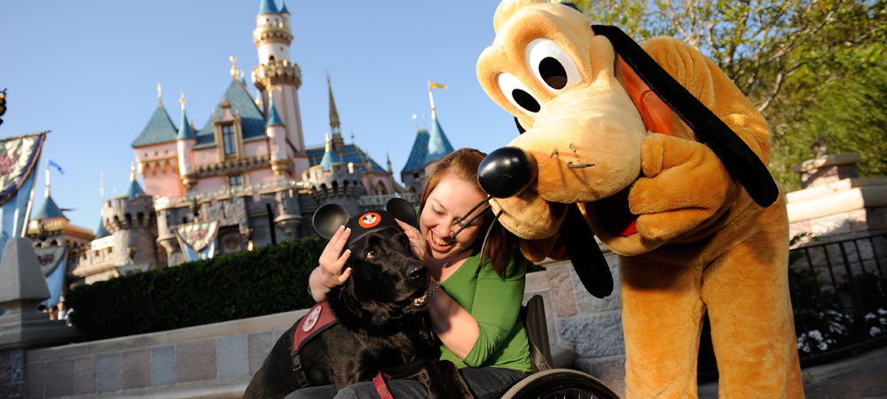 Pluto next to guest with service dog wearing Mickie ears
