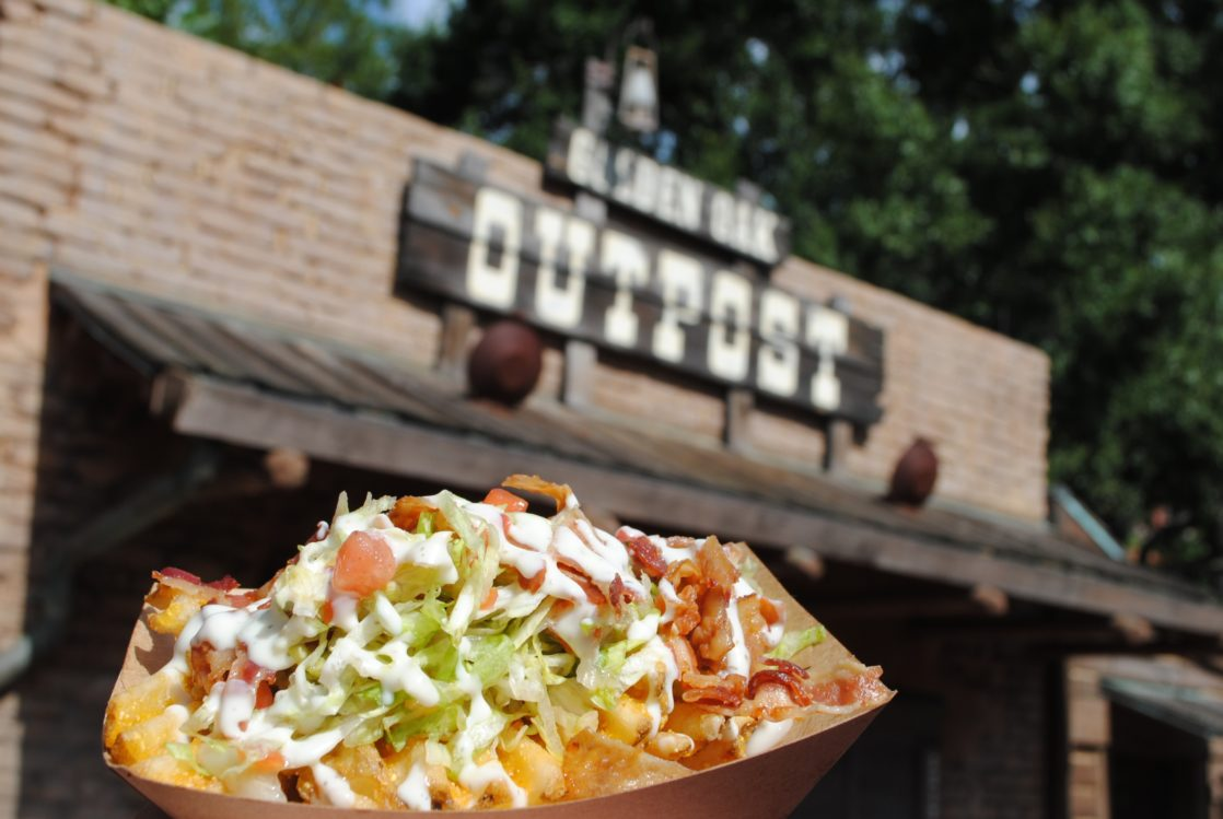 BBQ waffle fries in front of the OutPost