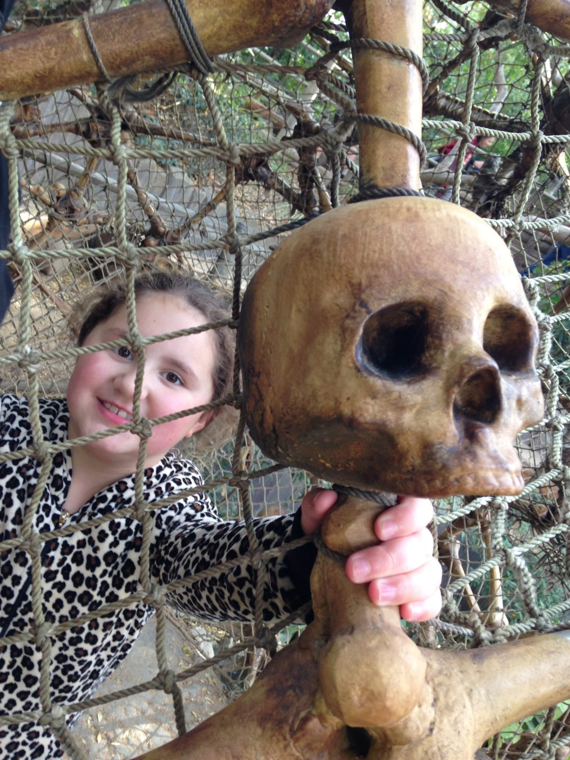 Skull on pirates lair
