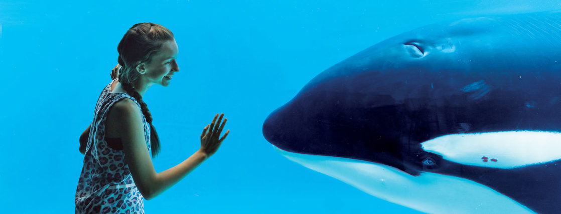 Little girl smiling at a orca