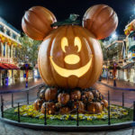 Disneyland Mickey's Halloween Pumpkin