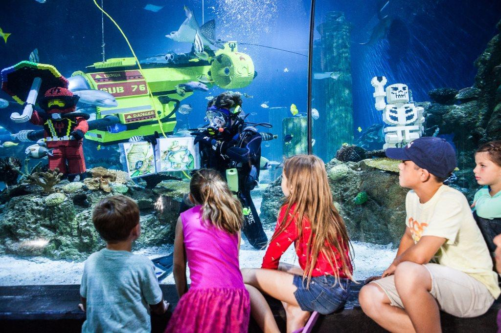 LEGOLAND guide: sea life aquarium