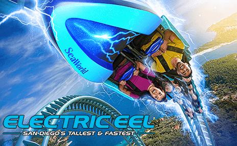 Electric eel roller coaster