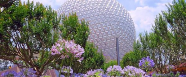 Epcot in front of flowers