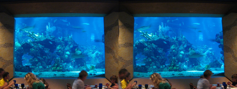 Coral and Reef restaurant