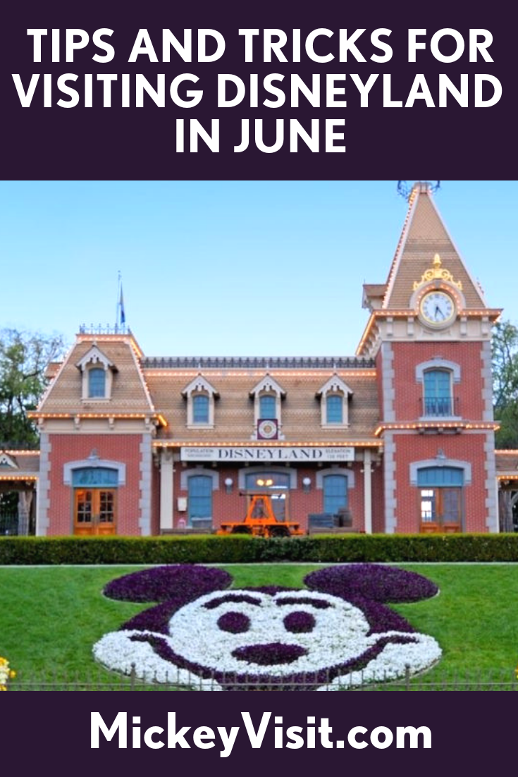 Disneyland in June